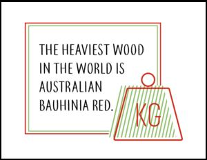 The worlds heaviest wood