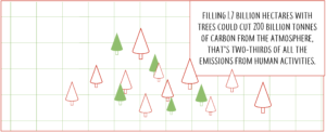 how many tress to reduce carbon