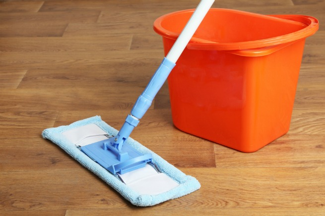 an image of a microfibre mop